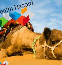 The ADHA needs a new camel